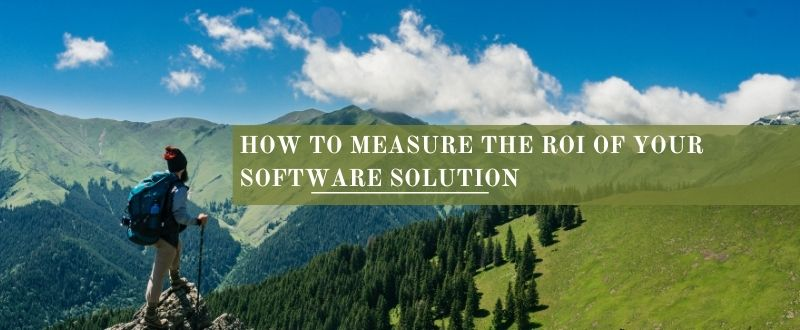 How to measure the ROI of software